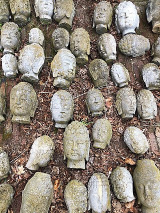 Group of old Buddha heads
